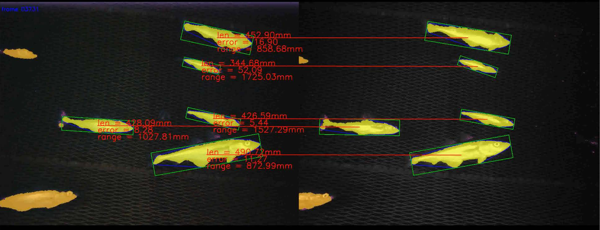 http://www.viametoolkit.org/wp-content/uploads/2018/02/fish_measurement_example.png